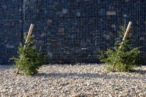 entretien mur en gabions