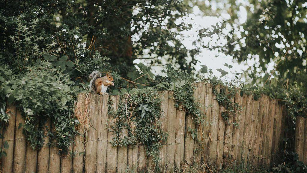 choisir une clôture en bois