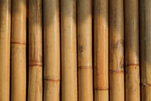 Pose bambou