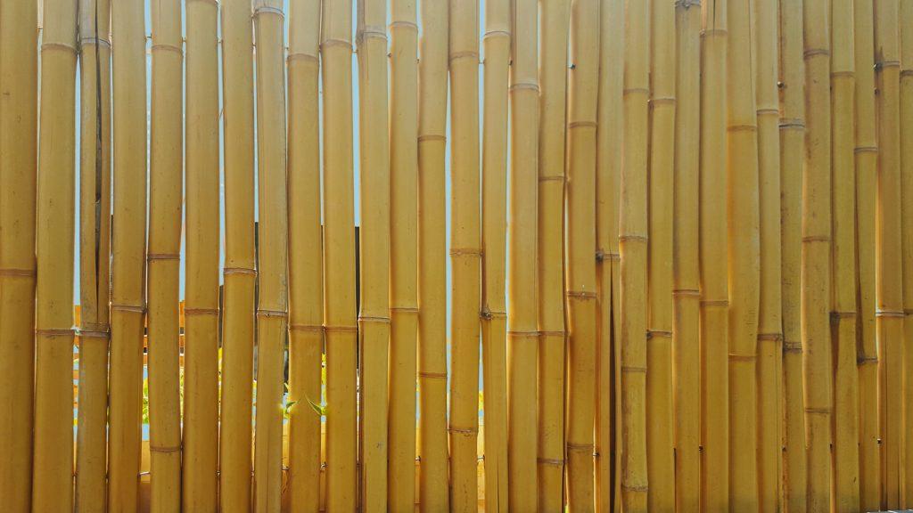 Types, prix et pose des clôtures en bambou en Belgique