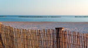 clôture régulière en bambou