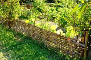 Palissade en bambou