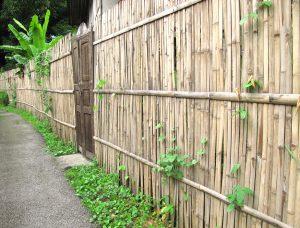 Pose clôture en bambou